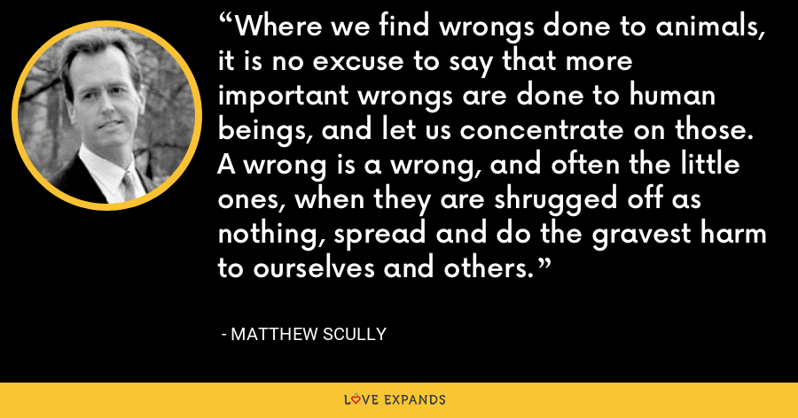 Where we find wrongs done to animals, it is no excuse to say that more important wrongs are done to human beings, and let us concentrate on those. A wrong is a wrong, and often the little ones, when they are shrugged off as nothing, spread and do the gravest harm to ourselves and others. - Matthew Scully