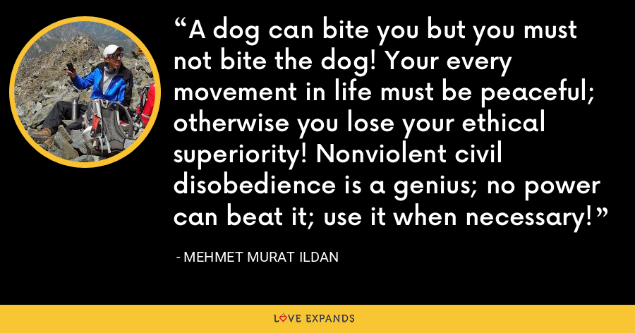 A dog can bite you but you must not bite the dog! Your every movement in life must be peaceful; otherwise you lose your ethical superiority! Nonviolent civil disobedience is a genius; no power can beat it; use it when necessary! - Mehmet Murat Ildan