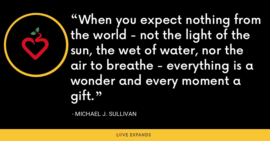 When you expect nothing from the world - not the light of the sun, the wet of water, nor the air to breathe - everything is a wonder and every moment a gift. - Michael J. Sullivan