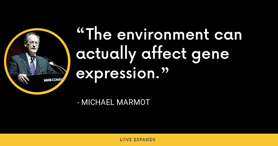 The environment can actually affect gene expression. - Michael Marmot