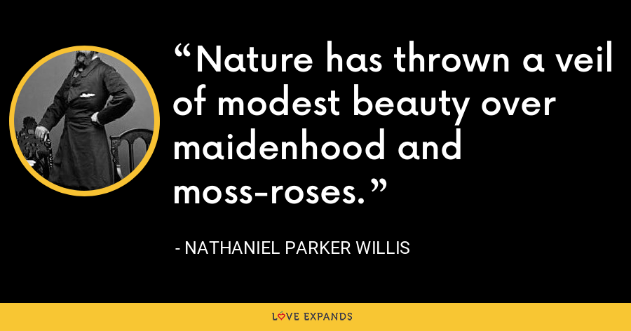 Nature has thrown a veil of modest beauty over maidenhood and moss-roses. - Nathaniel Parker Willis