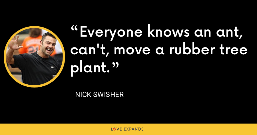 Everyone knows an ant, can't, move a rubber tree plant. - Nick Swisher