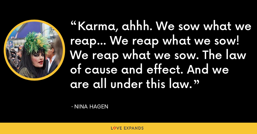 Karma, ahhh. We sow what we reap... We reap what we sow! We reap what we sow. The law of cause and effect. And we are all under this law. - Nina Hagen
