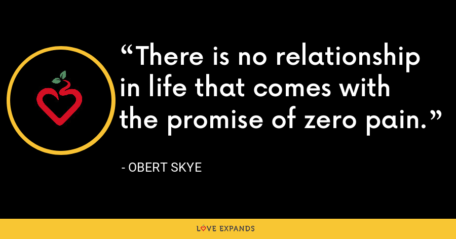 There is no relationship in life that comes with the promise of zero pain. - Obert Skye