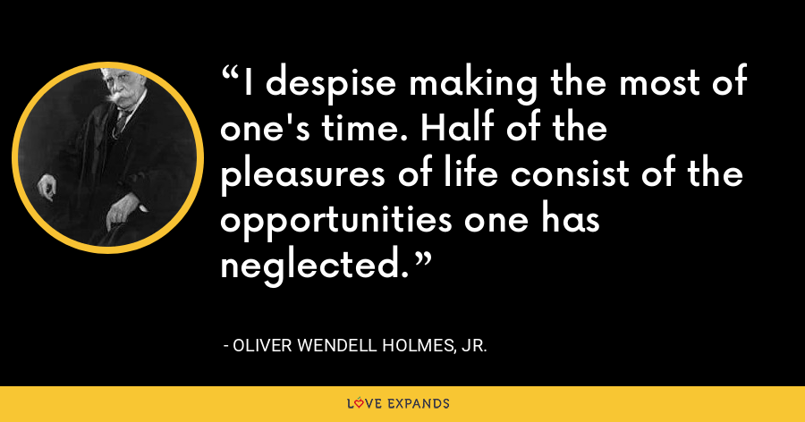 I despise making the most of one's time. Half of the pleasures of life consist of the opportunities one has neglected. - Oliver Wendell Holmes, Jr.