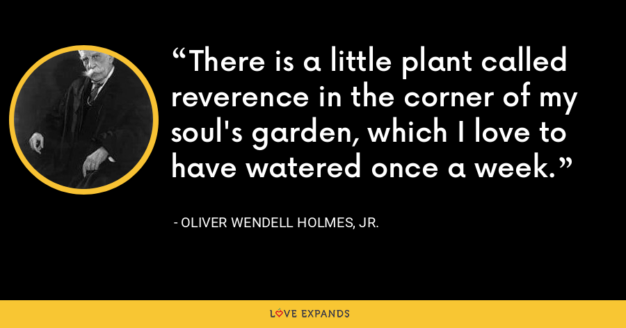 There is a little plant called reverence in the corner of my soul's garden, which I love to have watered once a week. - Oliver Wendell Holmes, Jr.