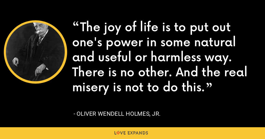 The joy of life is to put out one's power in some natural and useful or harmless way. There is no other. And the real misery is not to do this. - Oliver Wendell Holmes, Jr.