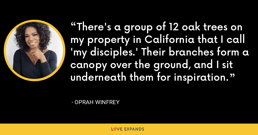 There's a group of 12 oak trees on my property in California that I call 'my disciples.' Their branches form a canopy over the ground, and I sit underneath them for inspiration. - Oprah Winfrey
