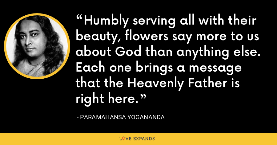 Humbly serving all with their beauty, flowers say more to us about God than anything else. Each one brings a message that the Heavenly Father is right here. - Paramahansa Yogananda