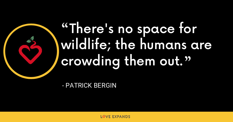 There's no space for wildlife; the humans are crowding them out. - Patrick Bergin