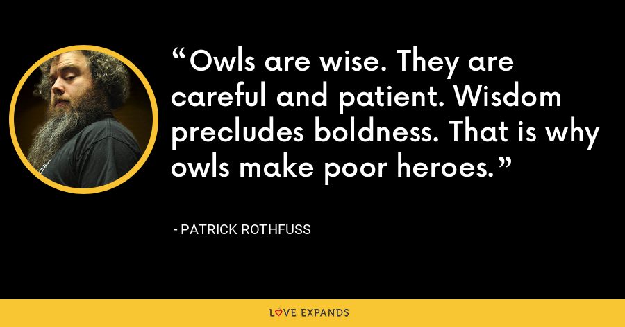Owls are wise. They are careful and patient. Wisdom precludes boldness. That is why owls make poor heroes. - Patrick Rothfuss