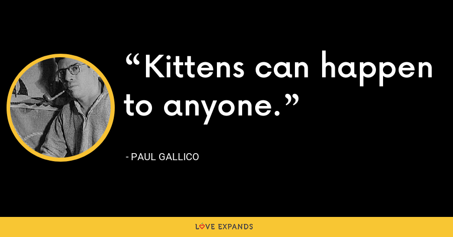 Kittens can happen to anyone. - Paul Gallico