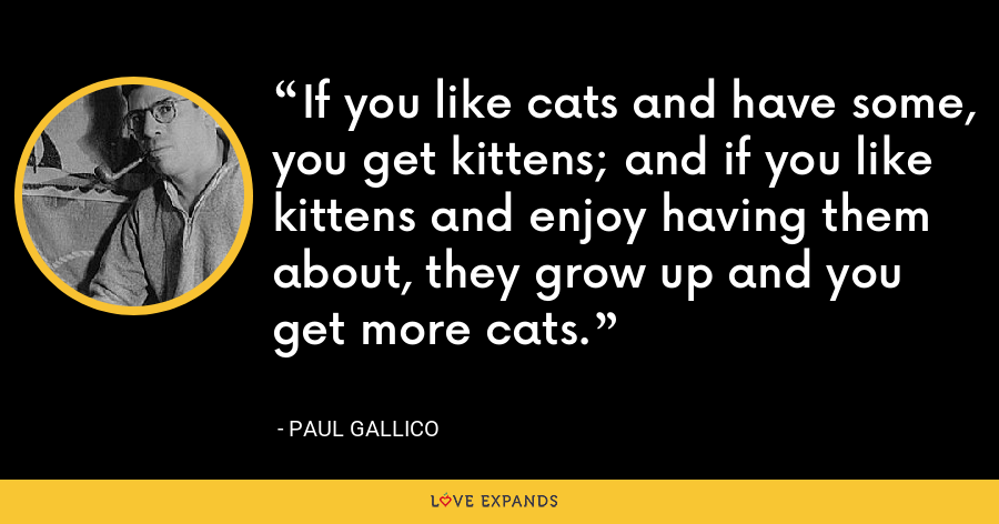 If you like cats and have some, you get kittens; and if you like kittens and enjoy having them about, they grow up and you get more cats. - Paul Gallico