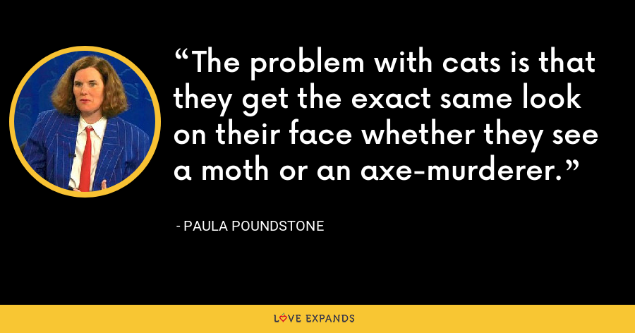 The problem with cats is that they get the exact same look on their face whether they see a moth or an axe-murderer. - Paula Poundstone