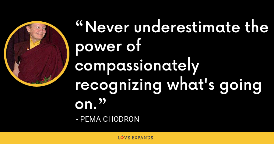Never underestimate the power of compassionately recognizing what's going on. - Pema Chodron