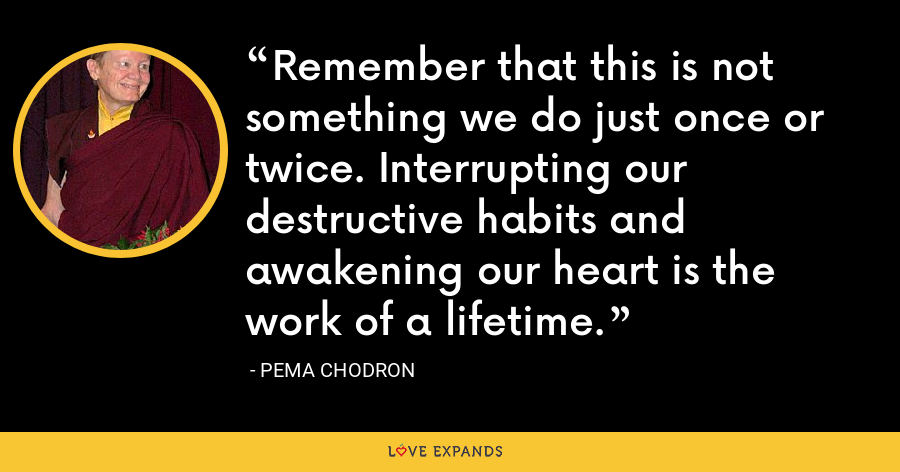Remember that this is not something we do just once or twice. Interrupting our destructive habits and awakening our heart is the work of a lifetime. - Pema Chodron
