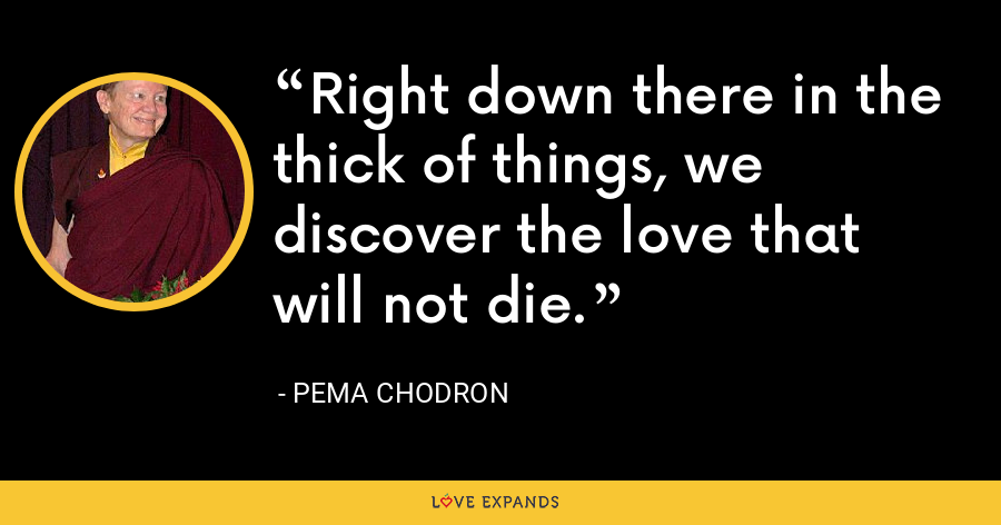Right down there in the thick of things, we discover the love that will not die. - Pema Chodron