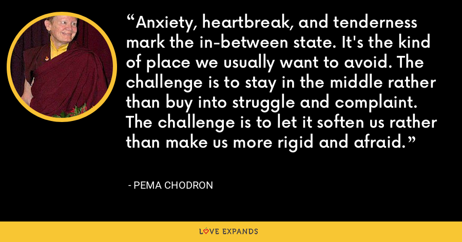 Anxiety, heartbreak, and tenderness mark the in-between state. It's the kind of place we usually want to avoid. The challenge is to stay in the middle rather than buy into struggle and complaint. The challenge is to let it soften us rather than make us more rigid and afraid. - Pema Chodron
