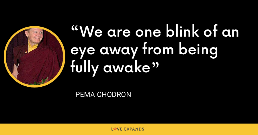 We are one blink of an eye away from being fully awake - Pema Chodron