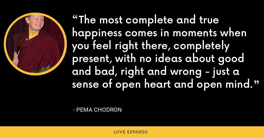 The most complete and true happiness comes in moments when you feel right there, completely present, with no ideas about good and bad, right and wrong - just a sense of open heart and open mind. - Pema Chodron