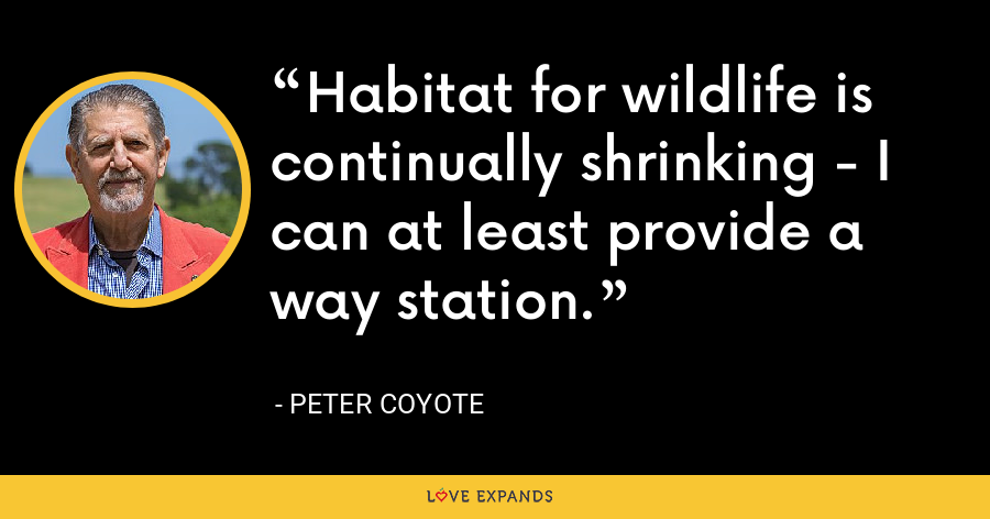 Habitat for wildlife is continually shrinking - I can at least provide a way station. - Peter Coyote