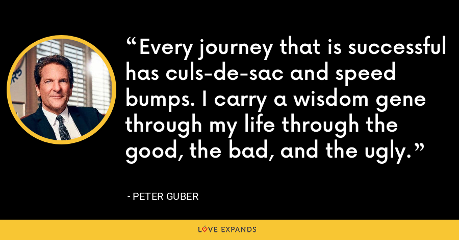 Every journey that is successful has culs-de-sac and speed bumps. I carry a wisdom gene through my life through the good, the bad, and the ugly. - Peter Guber