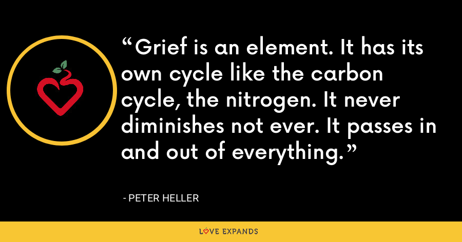 Grief is an element. It has its own cycle like the carbon cycle, the nitrogen. It never diminishes not ever. It passes in and out of everything. - Peter Heller