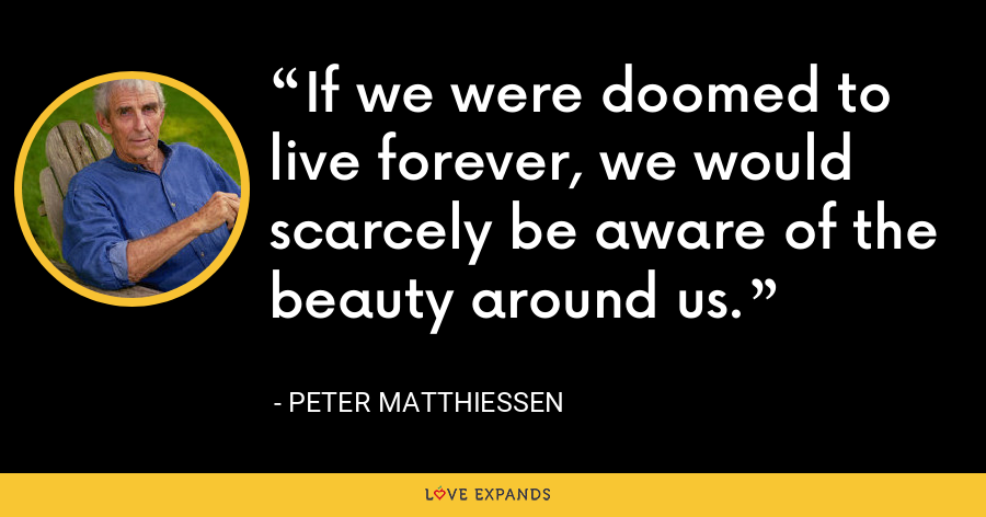 If we were doomed to live forever, we would scarcely be aware of the beauty around us. - Peter Matthiessen