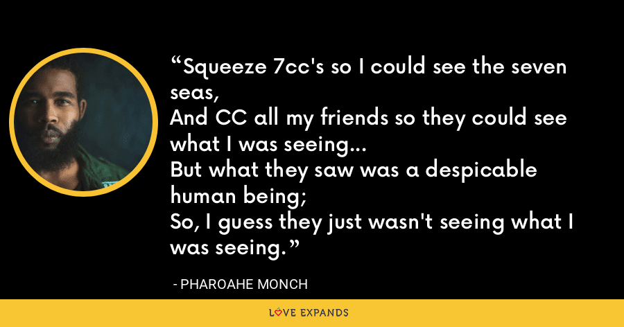 Squeeze 7cc's so I could see the seven seas,And CC all my friends so they could see what I was seeing...But what they saw was a despicable human being;So, I guess they just wasn't seeing what I was seeing. - Pharoahe Monch
