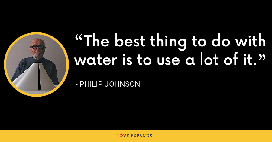 The best thing to do with water is to use a lot of it. - Philip Johnson
