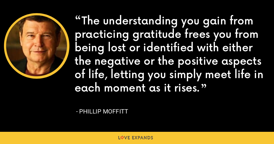 The understanding you gain from practicing gratitude frees you from being lost or identified with either the negative or the positive aspects of life, letting you simply meet life in each moment as it rises. - Phillip Moffitt