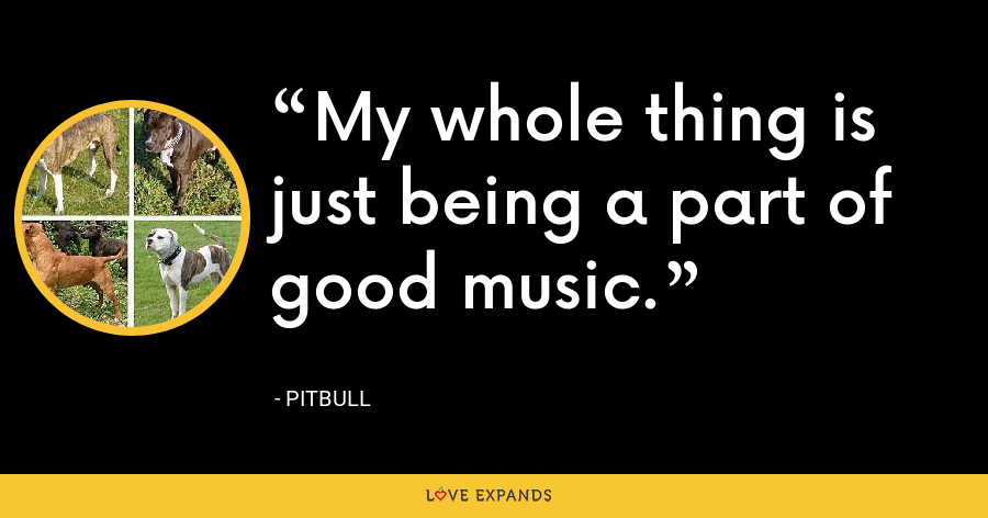 My whole thing is just being a part of good music. - Pitbull