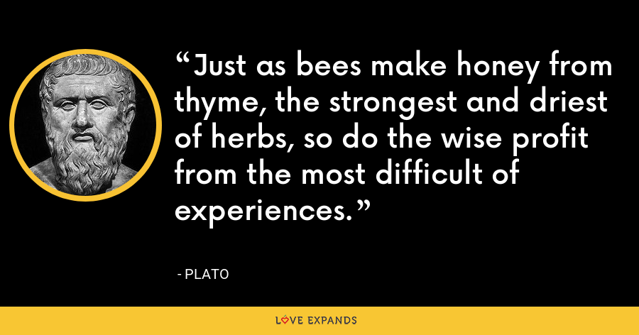 Just as bees make honey from thyme, the strongest and driest of herbs, so do the wise profit from the most difficult of experiences. - Plato