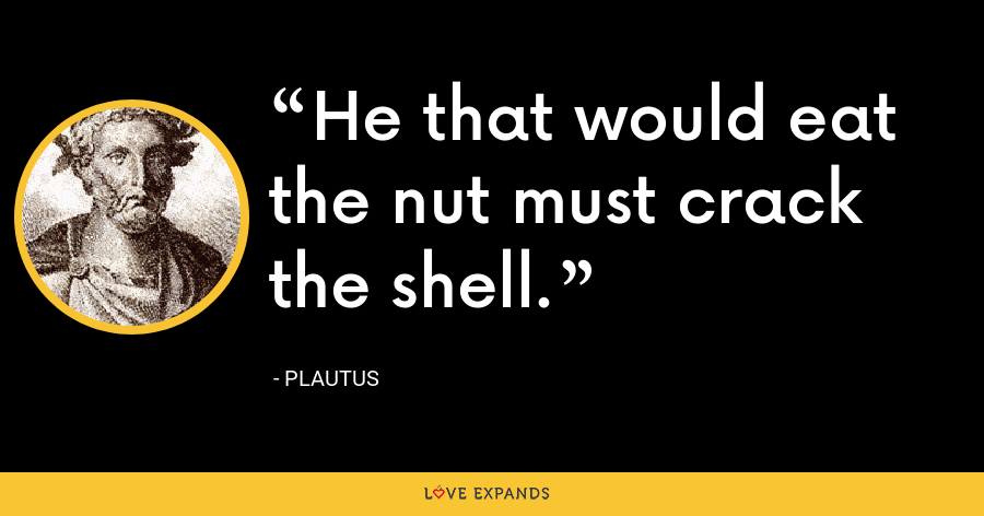 He that would eat the nut must crack the shell. - Plautus