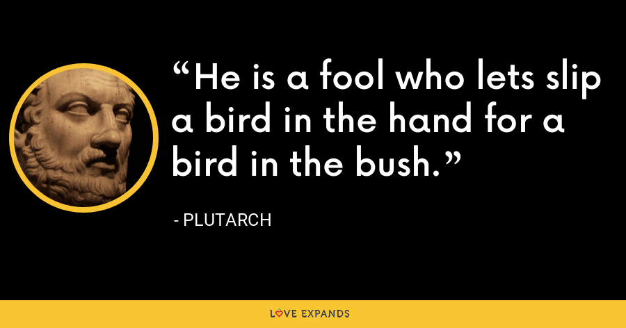 He is a fool who lets slip a bird in the hand for a bird in the bush. - Plutarch