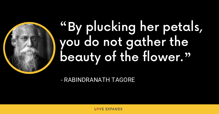 By plucking her petals, you do not gather the beauty of the flower. - Rabindranath Tagore