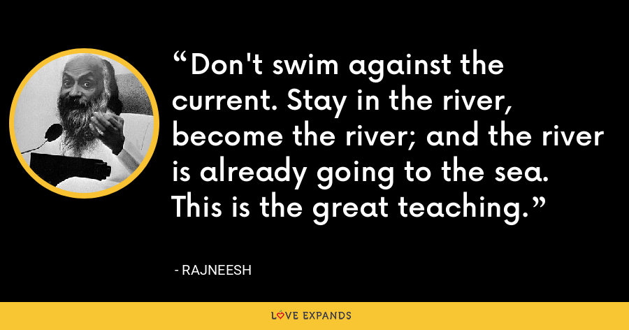 Don't swim against the current. Stay in the river, become the river; and the river is already going to the sea. This is the great teaching. - Rajneesh