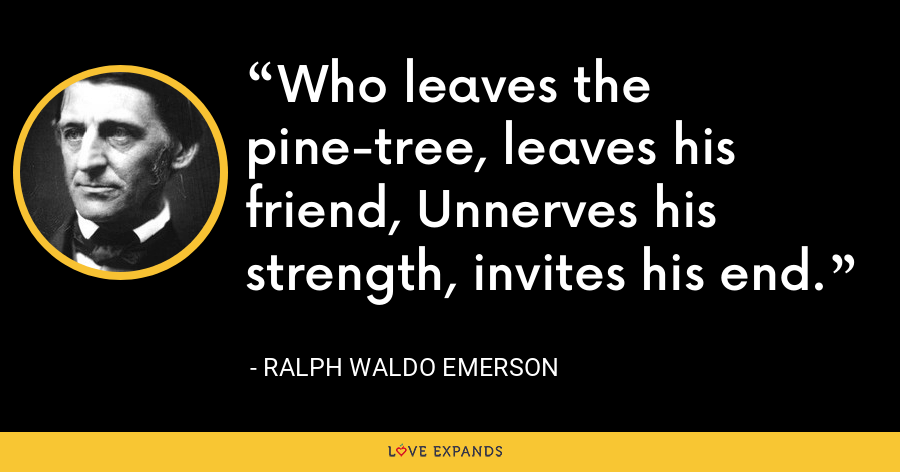 Who leaves the pine-tree, leaves his friend, Unnerves his strength, invites his end. - Ralph Waldo Emerson