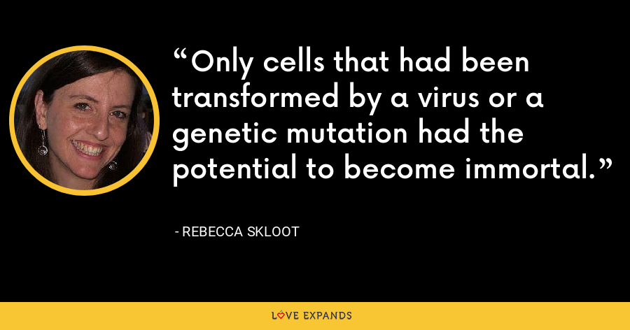 Only cells that had been transformed by a virus or a genetic mutation had the potential to become immortal. - Rebecca Skloot
