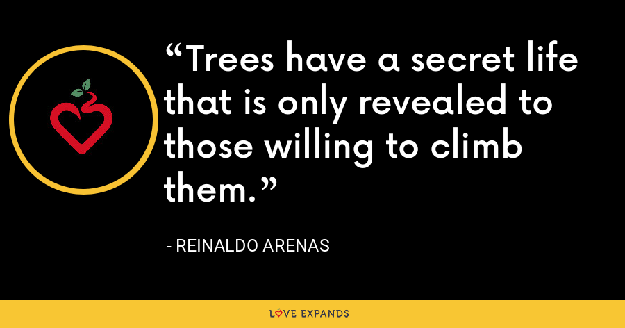Trees have a secret life that is only revealed to those willing to climb them. - Reinaldo Arenas