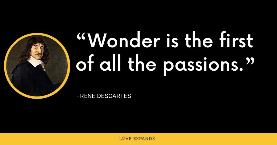 Wonder is the first of all the passions. - Rene Descartes