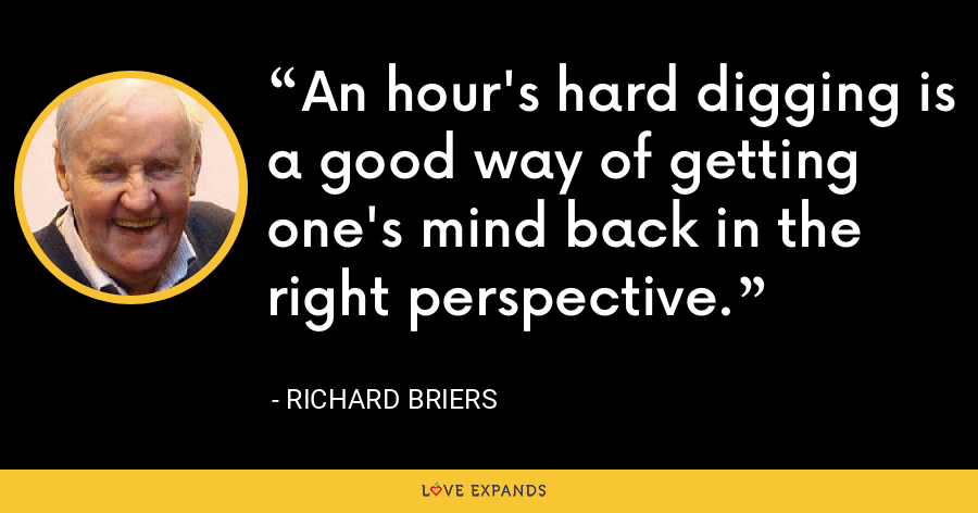An hour's hard digging is a good way of getting one's mind back in the right perspective. - Richard Briers