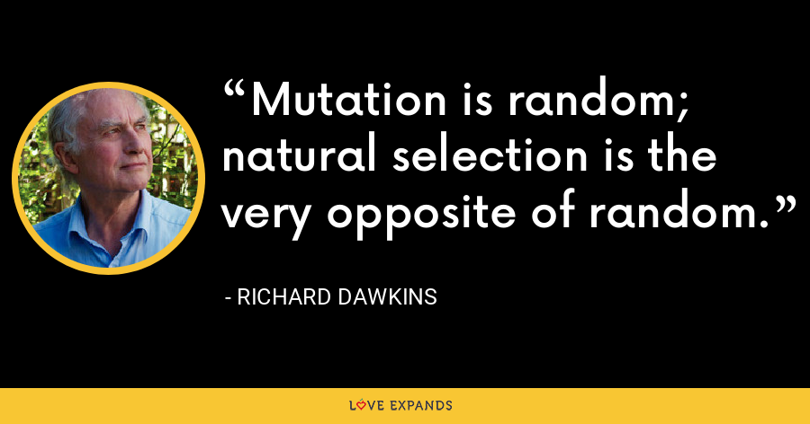 Mutation is random; natural selection is the very opposite of random. - Richard Dawkins