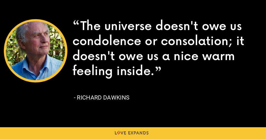 The universe doesn't owe us condolence or consolation; it doesn't owe us a nice warm feeling inside. - Richard Dawkins