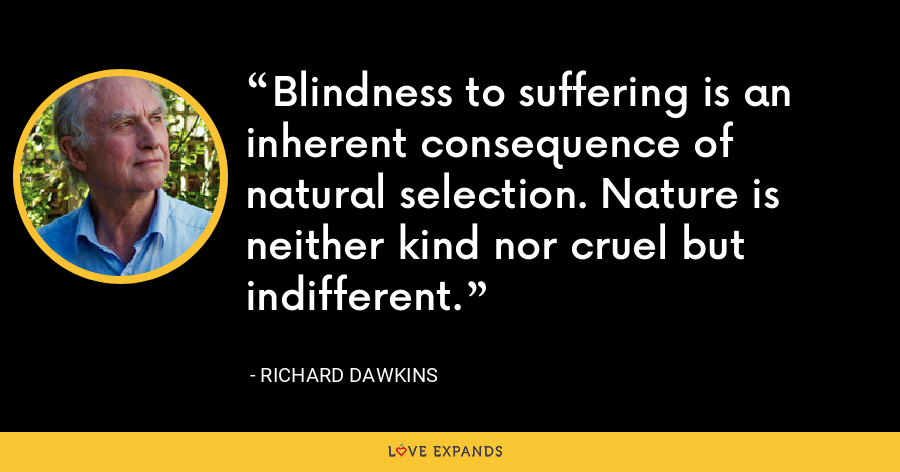 Blindness to suffering is an inherent consequence of natural selection. Nature is neither kind nor cruel but indifferent. - Richard Dawkins