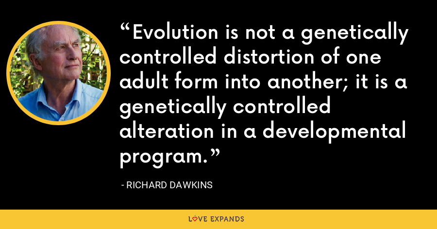 Evolution is not a genetically controlled distortion of one adult form into another; it is a genetically controlled alteration in a developmental program. - Richard Dawkins