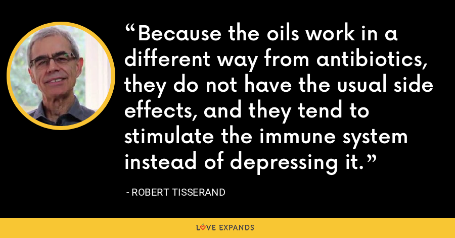 Because the oils work in a different way from antibiotics, they do not have the usual side effects, and they tend to stimulate the immune system instead of depressing it. - Robert Tisserand