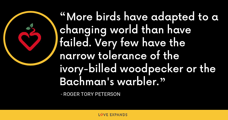 More birds have adapted to a changing world than have failed. Very few have the narrow tolerance of the ivory-billed woodpecker or the Bachman's warbler. - Roger Tory Peterson