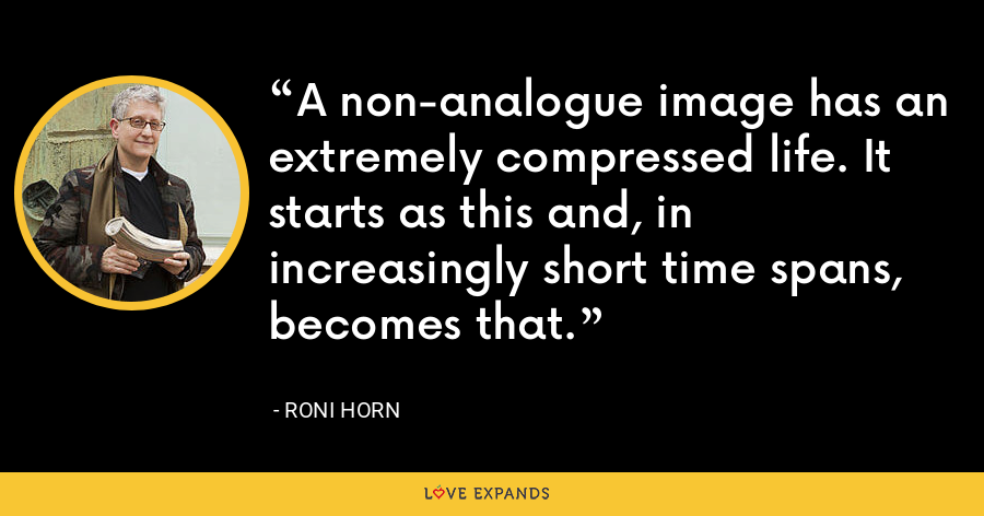 A non-analogue image has an extremely compressed life. It starts as this and, in increasingly short time spans, becomes that. - Roni Horn