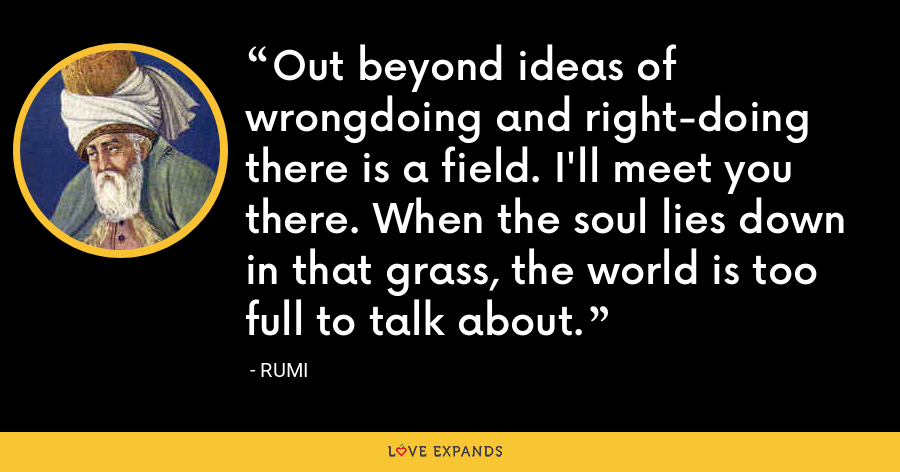 Out beyond ideas of wrongdoing and right-doing there is a field. I'll meet you there. When the soul lies down in that grass, the world is too full to talk about. - Rumi